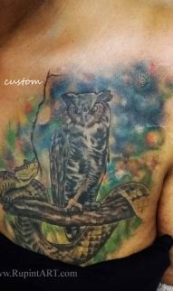 Owl & Snake
