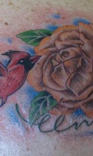 Redbird & rose